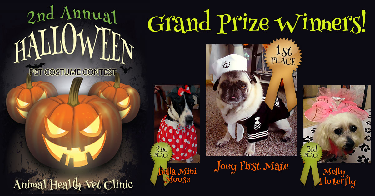 Pet Costume Contest 2014