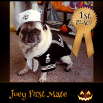 1st Place Winner Joey First Mate - Pet Costume Contest Entry