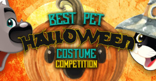 Best Pet Halloween Costume Competition